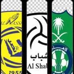 4 أندية سعودية لن تشارك في دوري أبطال اسيا 2015