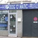 مغسلة الكلاب الأتوماتيكية ( Dog-o-Matic)