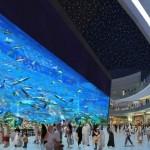 Dubai-Mall-4 - 208549