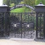 حديقة السموم (The Alnwick Garden)