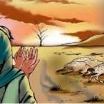 قصة نبي الله ايوب عليه السلام كامله
