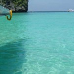شاطئ  مايا باي في فاي فاي - 207524