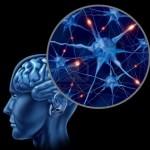 علم الأعصاب و تنمية سلوك المجرمين