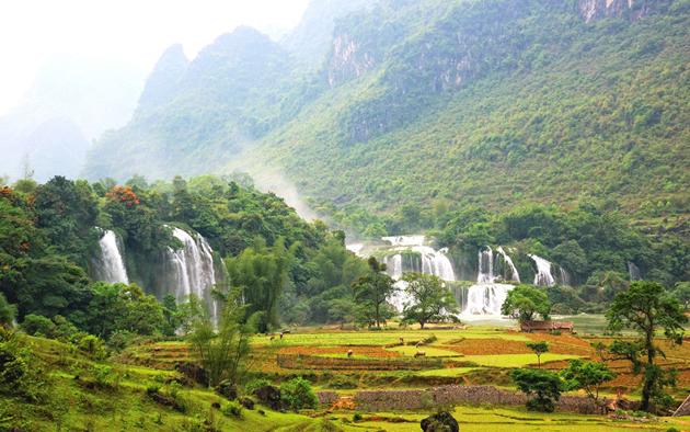 Vitnam Nature