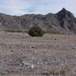 Earth flat in Nakhchivan - 220613