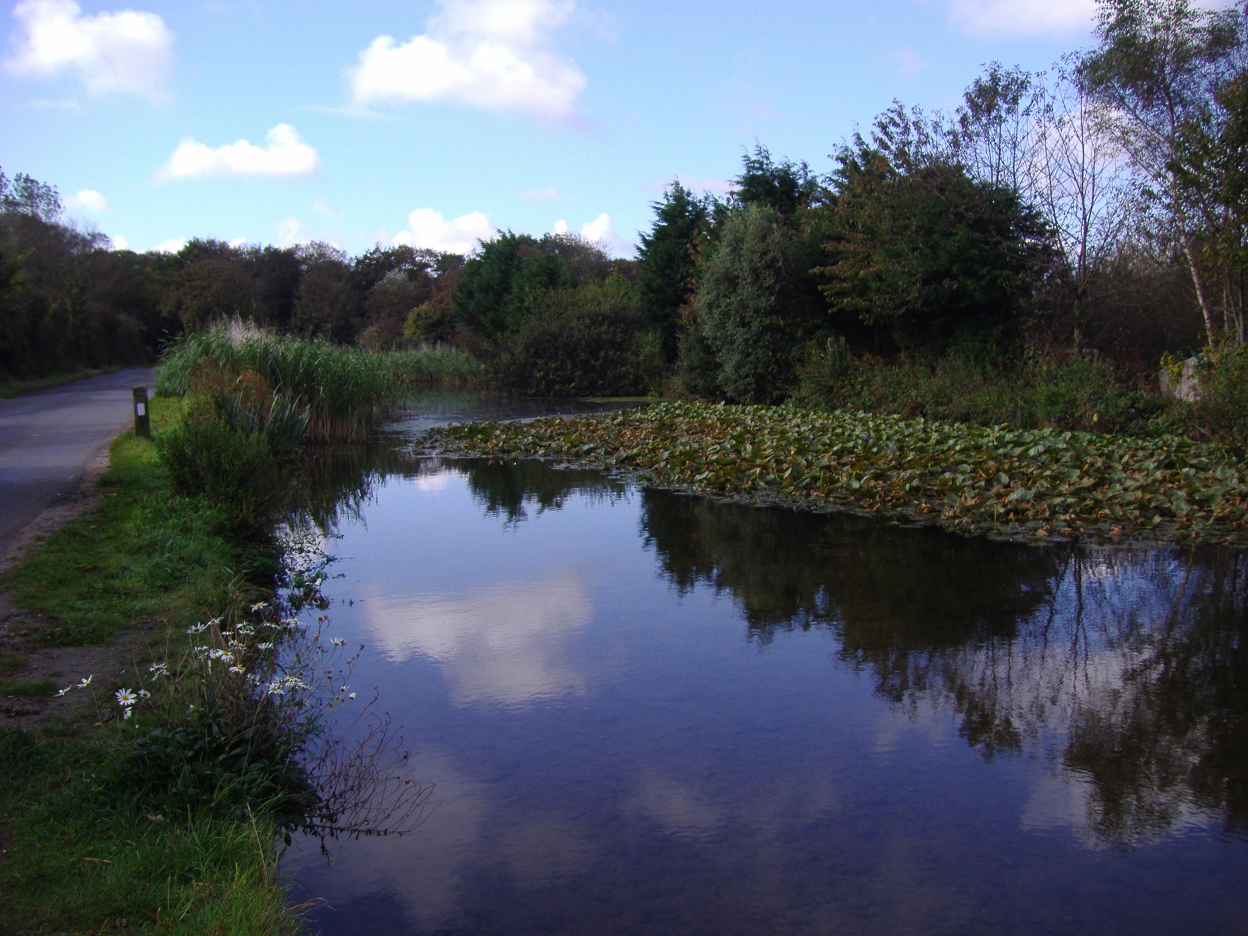 نهر بركة وروافده بالصور Gimingham_mill_pond_River_Mun