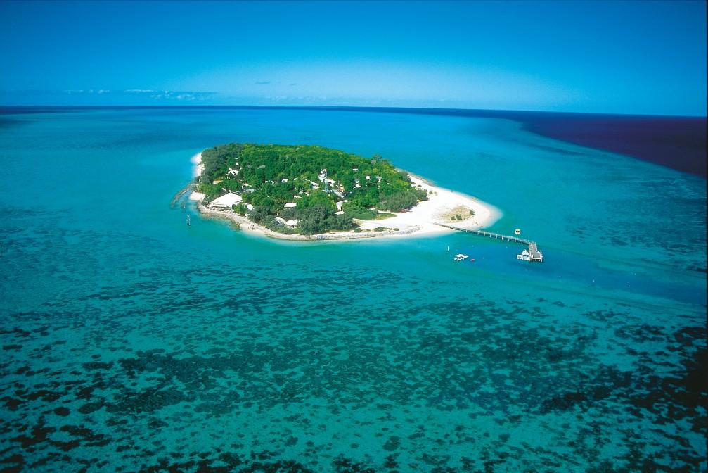الجزيرة