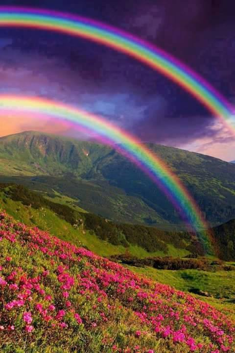 Landscape Nature  Rainbow