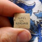 اصغر كتاب في العالم Life's Lil Pleasures