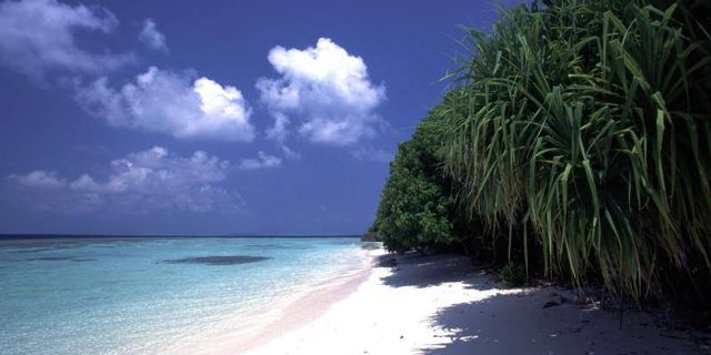 Maldives Republic