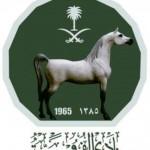 Saudi Equestrian Club - 211836