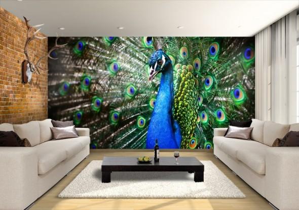 ورق جدران طاووس بغرفة جلوس