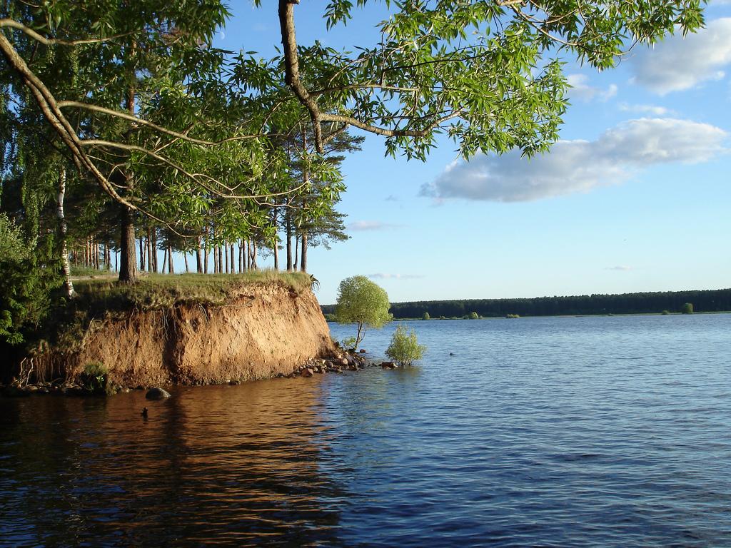 تقع الكثير من المدن على نهر فولجا منها