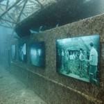 معرض لوحات فنية تحت الماء