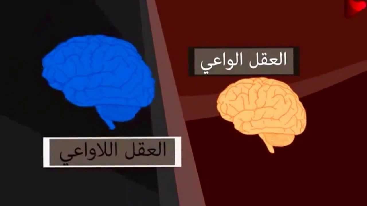 العقل الواعي و العقل اللاواعي