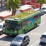 أغرب الإبتكارات حدائق فوق الحافلات