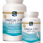 Omega 3s Fatty Acids - 249045