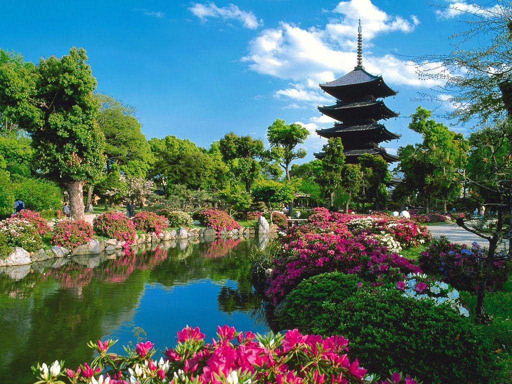 نتيجة بحث الصور عن السياحة في اليابان
