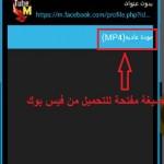 اقتراح صيغ لتحميل فيديو من فيس بوك - 254462