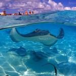 السياحه في جزر كايمان