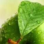 فوائد التفاح الاخضر للاسنان