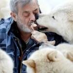 صداقات غريبة بين الانسان و بعض الحيوانات المفترسة
