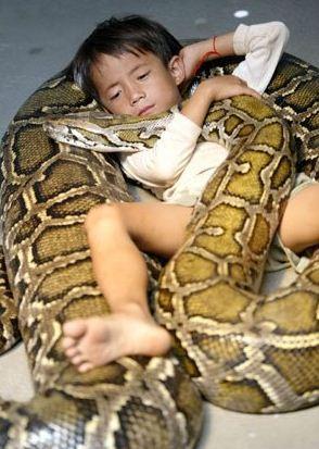 الطفل أويين و الثعبان