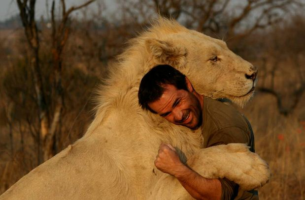 Kevin Richardson and lions