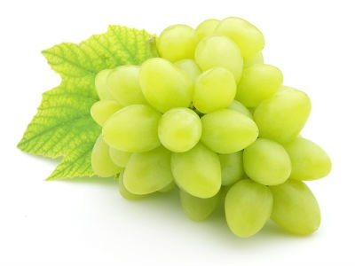 White Grape-Optimized