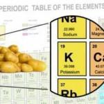الاغذية الغنية بالبوتاسيوم