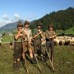 الهوية الثقافية السويسرية