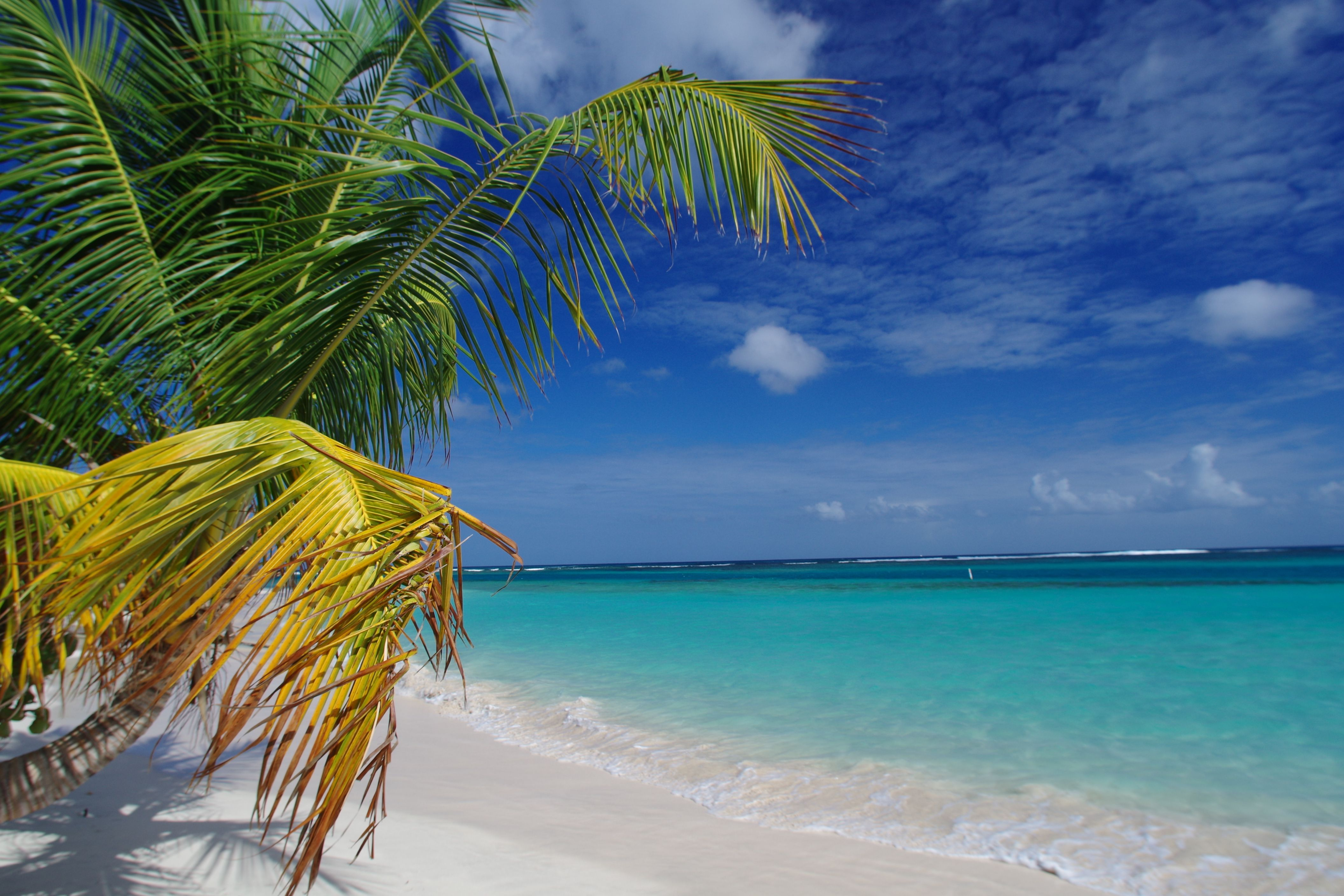 Flamenco Beach might just be the most beautiful beach in Puerto Rico