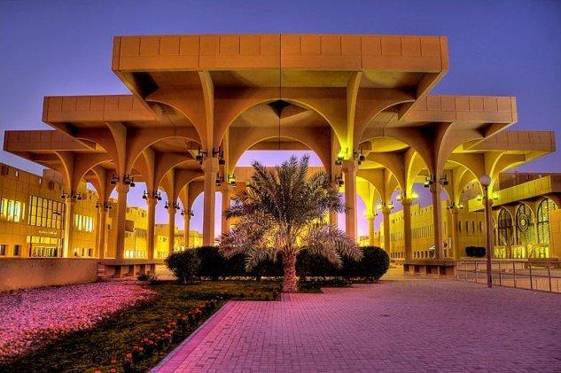 دور الجامعات العربية في تنمية الوعي السياسي