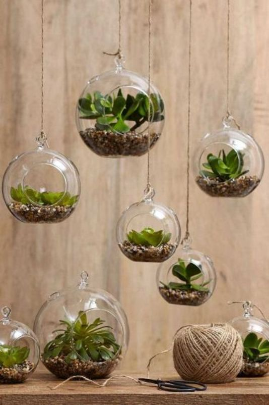 تجديد المنزل بأفكار ذكية Natural-plant.jpg