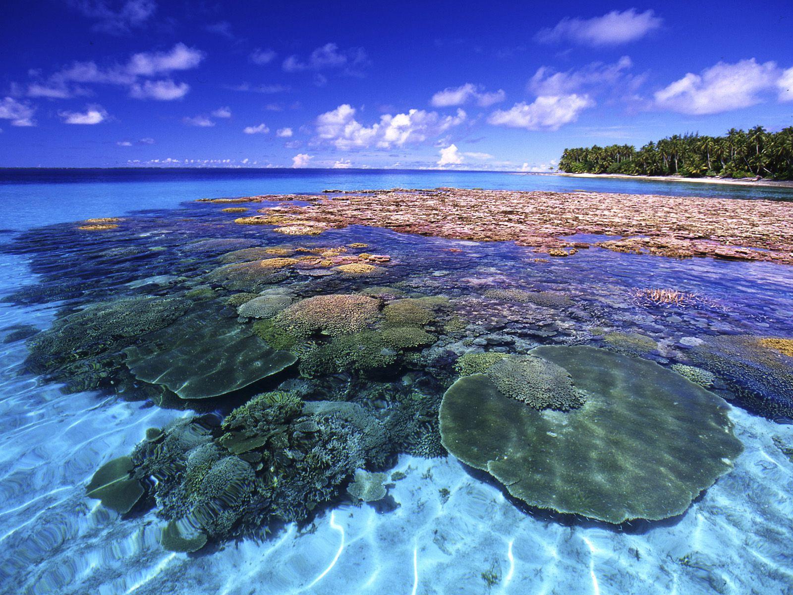 السياحة في جزر مارشال   المرسال