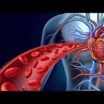 Thrombophilia-Optimized - 296496