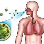 أهم عشرة أعشاب لامراض الجهاز التنفسي