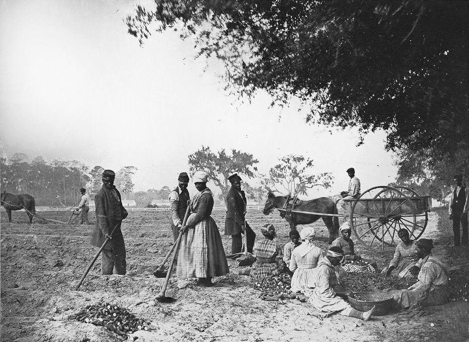 نتيجة بحث الصور عن تاريخ العبوديه فى امريكا