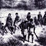 تاريخ العبودية في الولايات المتحدة الأمريكية