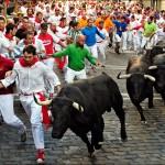 bull running - 300261