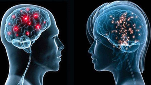 6 معلومات صادمة تعرفها لأول مرة عن العقل brain.jpg