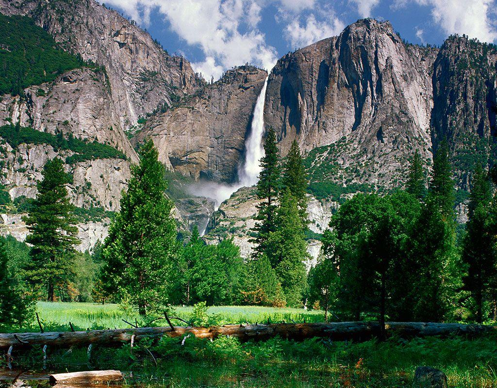 At Yosemite's visitor center