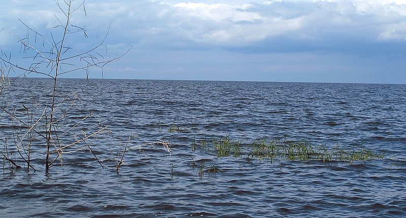 The Lake Okeechobee area