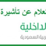 The Saudi Interior Ministry - the electronic queries - 325734