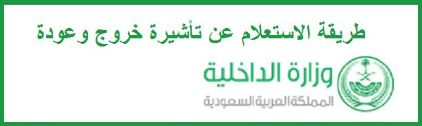 The Saudi Interior Ministry – the electronic queries