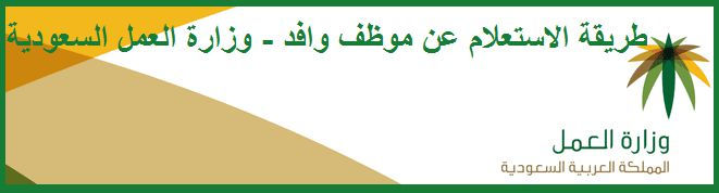 The Saudi Ministry of Labor - the electronic queries