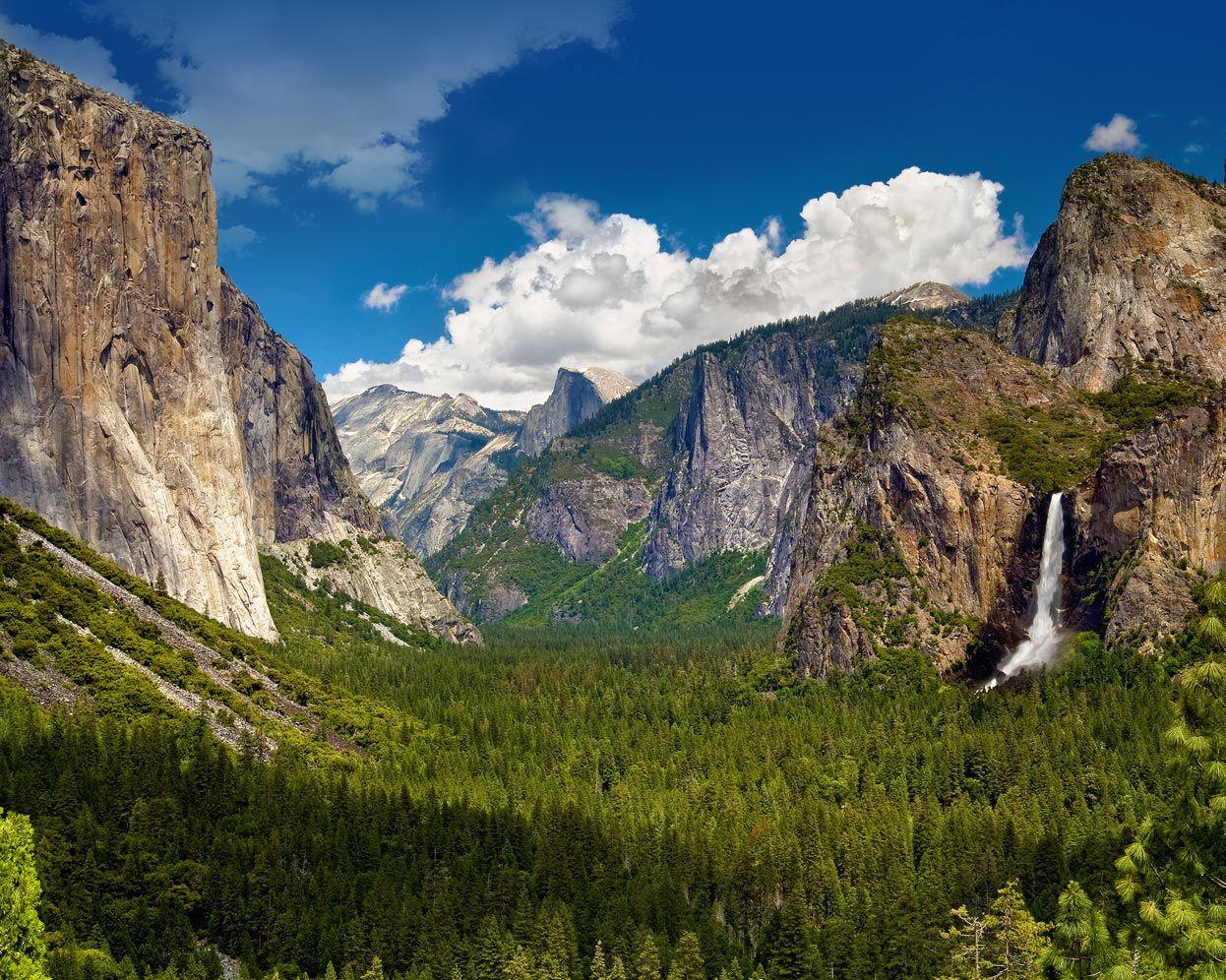 When you visit Yosemite Park