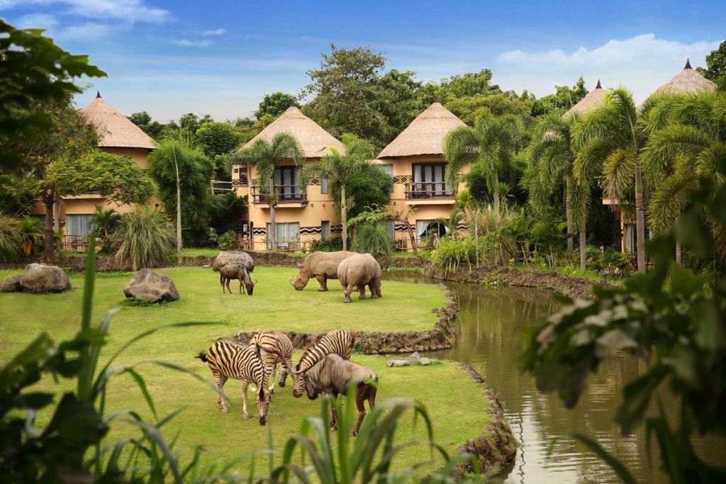 Get One Step Closer to the Wildlife without Leaving Luxury Behind