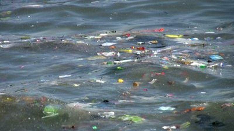 مخاطر تلوث مياه البحار المرسال