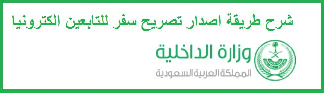 Saudi Ministry of the Interior and electronic services